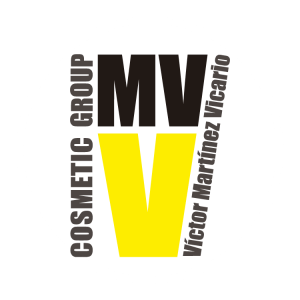 Logo VMV Group
